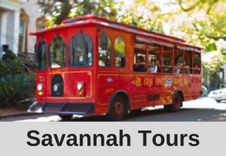 Savannah Tours.png