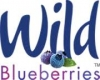 Wild Blueberry Association*