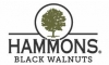 Hammons Black Walnuts*